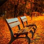 秋~冬はマッサージで体を温めましょう