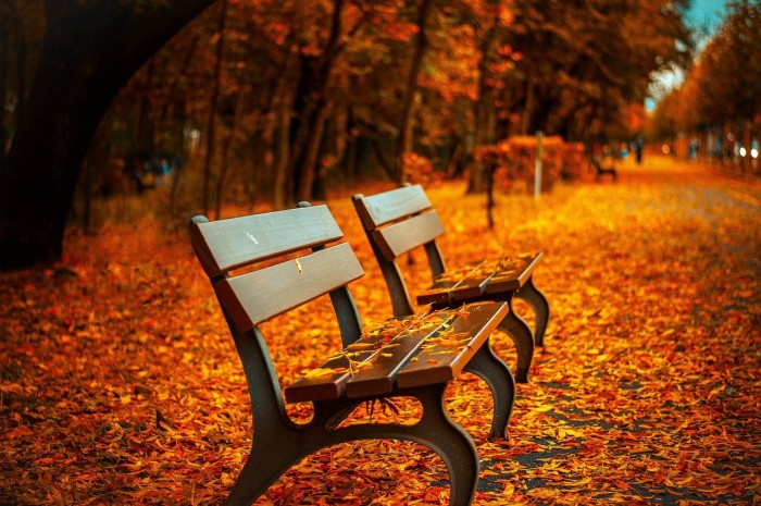 benches-560435_1280